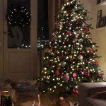 Verliebt in einen Weihnachtsbaum