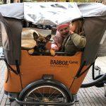 """Gut """"bedacht"""" ans Ziel – mit unserem Lieblingsbike von Babboe"""